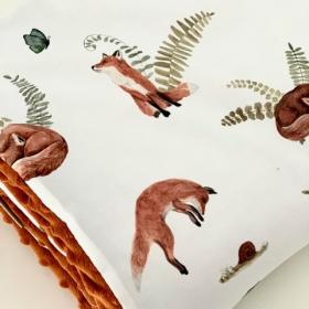 Couverture Mr Fox