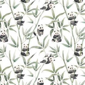 anneu de dentition panda
